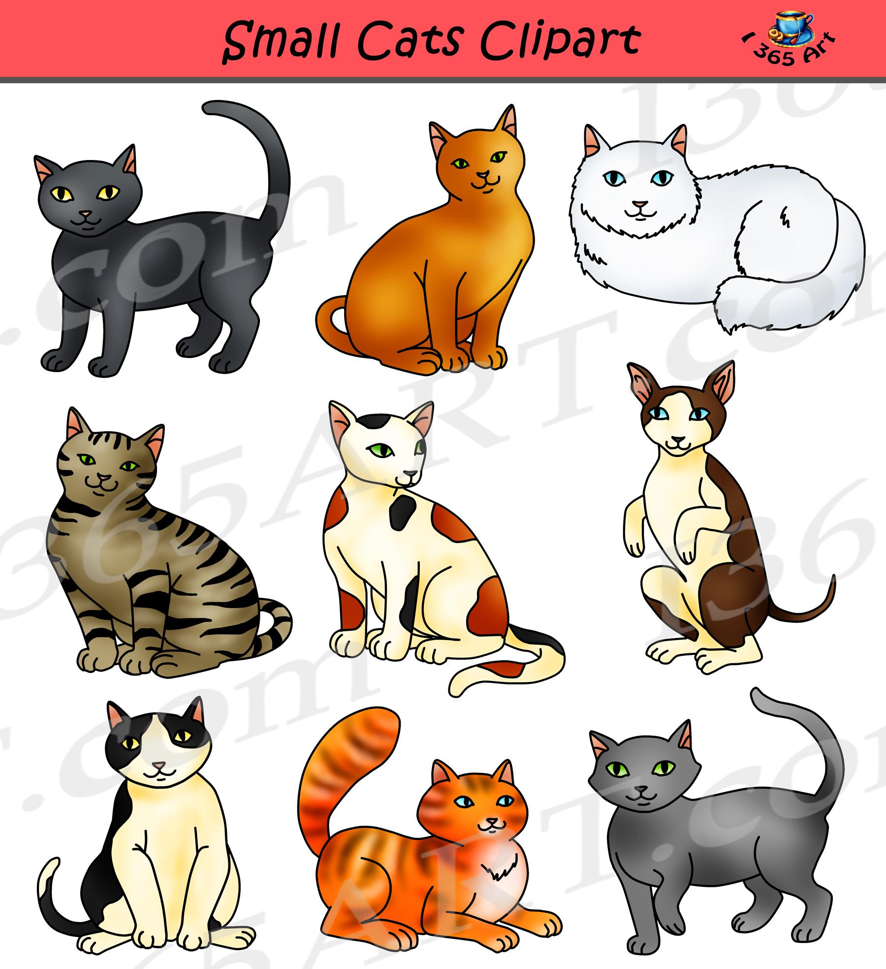 Small Cats Clipart Feline Clipart Graphics Clipart 4 School