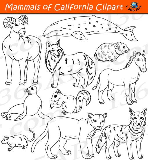 California mammals clipart black and white