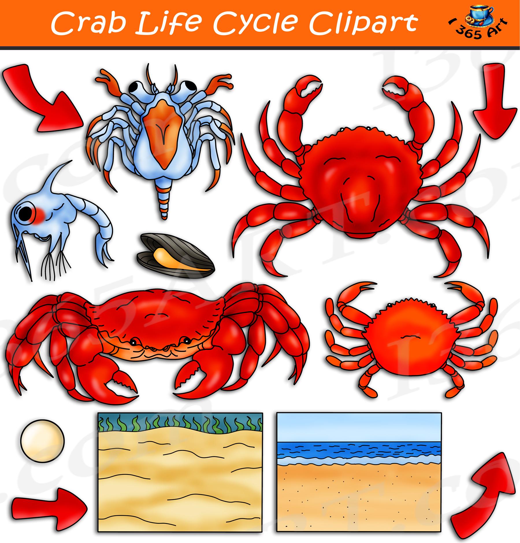 Crabs crab clipart free clip art images clipartwiz   Crab clipart ...   1881x1800