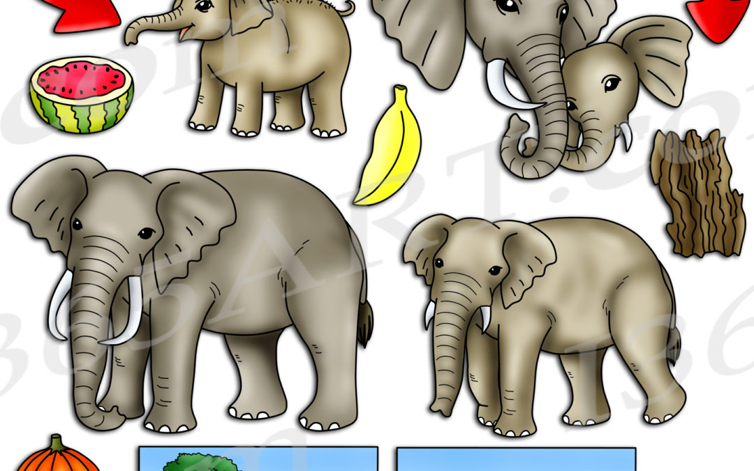 Elephant Life Cycle Clipart Set Download