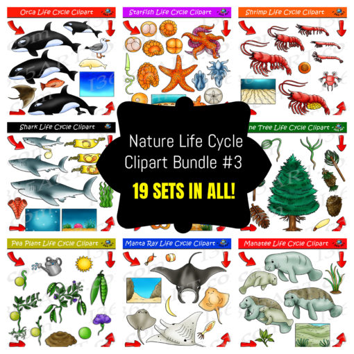 nature life cycle clipart pack